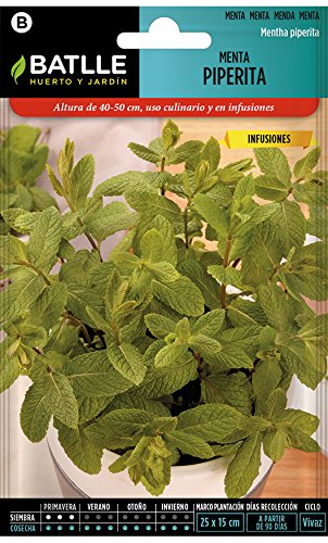 Semillas Aromáticas - Menta Piperita - Batlle