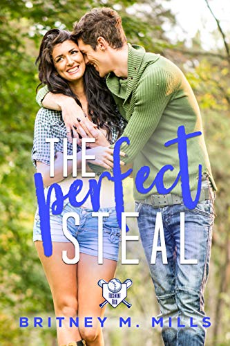 Book Cover for The Perfect Steal