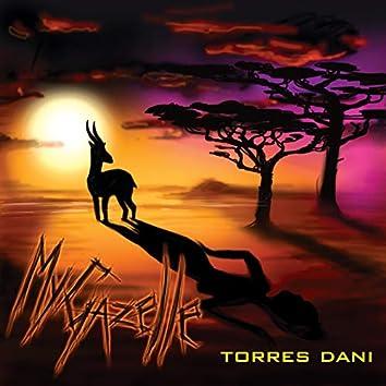 My Gazelle