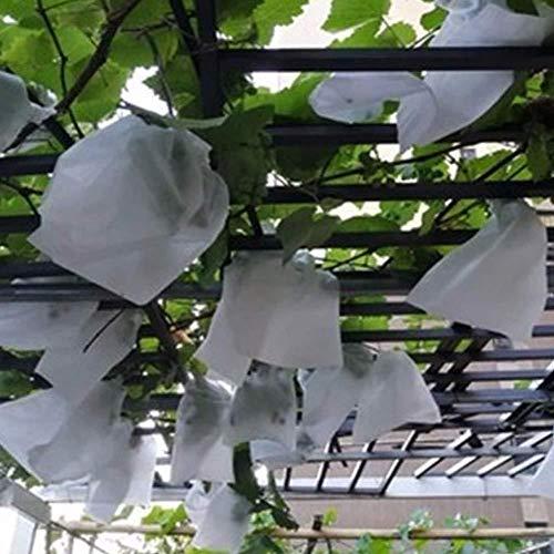 Ksruee Trauben Schutzbeutel, 100Stk Fruit Saver Garden Fruit Flower Schutz Tasche, zum Schutz vor Wespenfrass, Vögel, Kirschessigfliege, für Garten, Obst, Gemüse, Insekten, Mücken