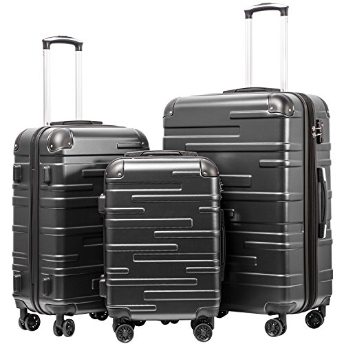 Coolife Luggage Expandable(only 28') Suitcase 3 Piece Set with TSA Lock Spinner 20in24in28in (reg grey)