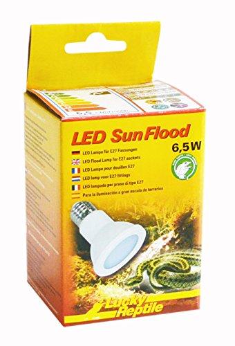 Lucky Reptile LED Sun FLOOD 6,5W, leistungsstarke LED Lampe mit E27 Fassung