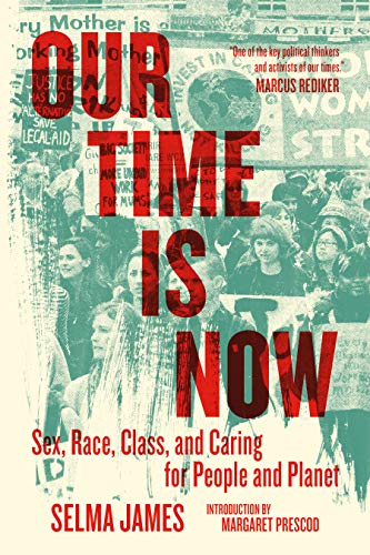 Our Time Is Now: Sex, Race, Class, and Caring for People and Planet (English Edition)