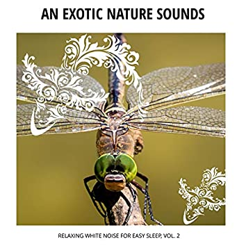 An Exotic Nature Sounds - Relaxing White Noise for Easy Sleep, Vol. 2
