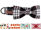 lionet paws Weich Baumwolle Fliege Hundehalsband mit Metall Verschluss Einstellbare Halsbänder für...