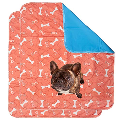 The Proper Pet Washable & Reusable Pee Pads for Dogs - Puppy Training (2-Pack) Sm/Med/Lg (Large 32