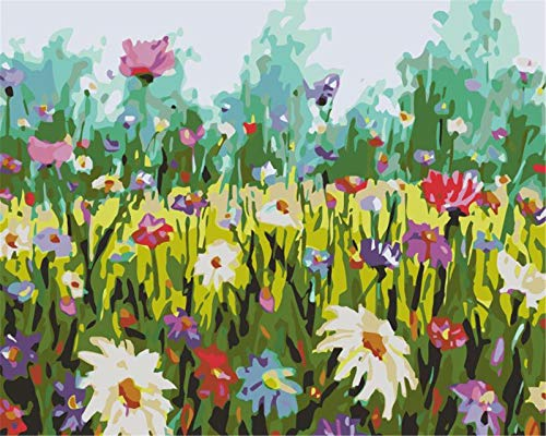 DIY Paint by Numbers for Adults Wild Flowers Acrylic Oil Paint by Number Kit for Kids Beginner On Canvas Art Crafts for Home Wall Decoration 40X50cm Frameless