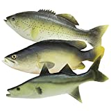 WAYBER 3 Pcs Simulated Fake Fish Model, Lifelike Artificial Sea Food Set for Aquarium Display, Home Decoration, Stage Drama & Photography Prop