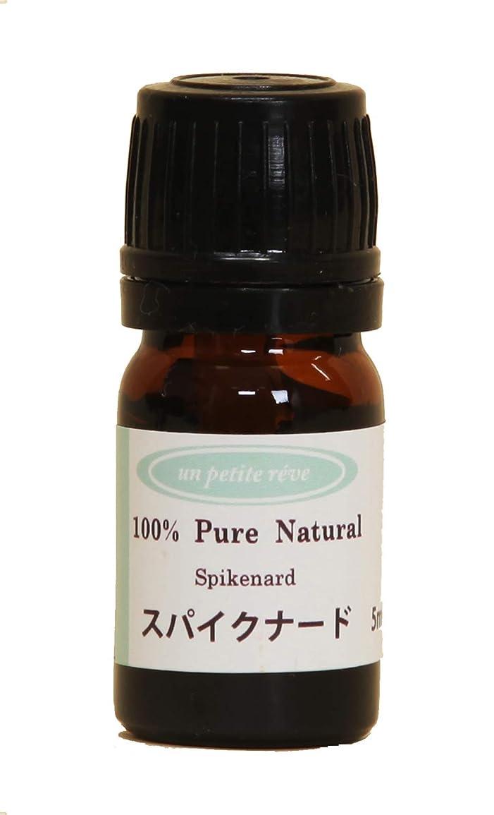 仕える洗剤プラスチックスパイクナード 5ml 100%天然アロマエッセンシャルオイル(精油)