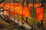 Christo The Gates - New York Central Park Poster Kunstdruck