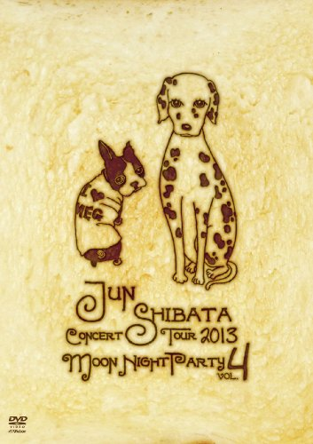 柴田 淳 CONCERT TOUR 2013 月夜PARTY vol.4 [DVD]