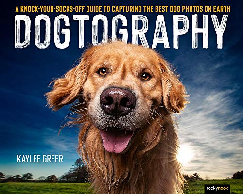 Dogtography: A Knock-Your-Socks-Off Guide to Capturing the Best Dog Photos on Earth
