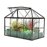 """Large Glass Plant Terrarium House – Succulent Glass House Terrarium with Lid Greenhouse Terrarium Tabletop Planter 9.3""""X7.5""""X5.3"""" NA"""