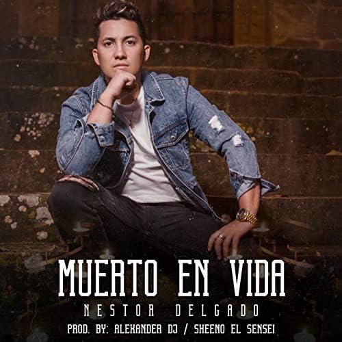 Nestor Delgado