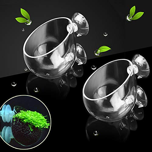 capetsma 2X Crystal Glass Aquatic Plant Pot, Aquarium Aquatic Planter, Red Shrimp Live Plants Fish Tank Glass Holder with 4X Suction Cups for Aquarium Aquascape Decoration…