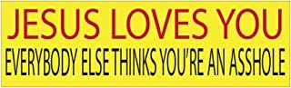 Rogue River Tactical 10in x 3in Large Funny Auto Car Decal Bumper Sticker Truck RV Boat Jesus Loves You Everybody Else Thinks You're an Asshole (Jesus Loves You)