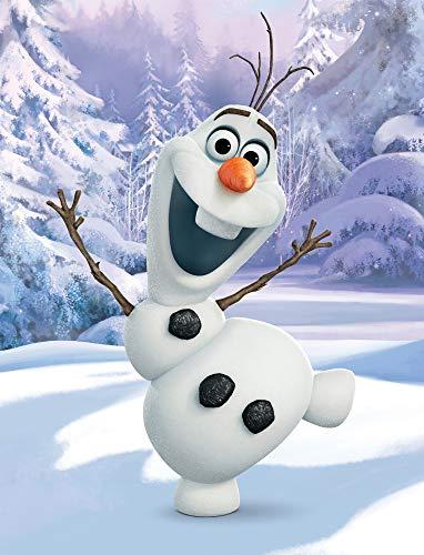 Große Frozen 2 Die Eiskönigin Olaf Kuscheldecke 130 x 170 cm super weiche Wohndecke Decke Sofadecke Fleece-Decke Disney Anna ELSA Sven Kristoff Arendelle Völlig unverfroren Pass. zur Bettwäsche
