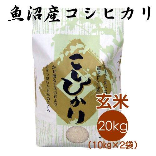 【恵方巻がおいしくできるお米】魚沼産コシヒカリ 玄米 20kg(10kg×2袋)