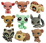 Lps Littlest Pet Shop Toys 15 unids/Lote Juguetes Lindos Mascota Cute Little Bear Pet Figura de acción Muñeca más pequeña