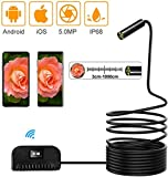 MRWW WiFi inspección inalámbrica cámara endoscopio endoscopio cámara USB HD Resistente al Agua de Inspección de la Serpiente rígido para iOS Android Smartphone/teléfono/Tableta,5 m
