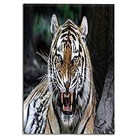 印刷者 可愛い のれん 七福 赤 暖簾 幅85cm×丈150cm ポリエステル 室内インテリア 開運のれん半遮光 おしゃれ 天然素材 動物 野生動物サファリサバンナの動物の自然動物園写真プリントを轟音と虎の顔