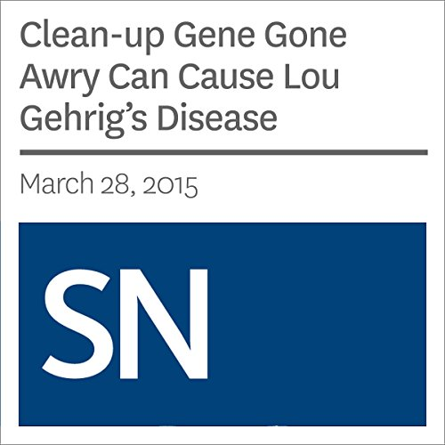 Clean-up Gene Gone Awry Can Cause Lou Gehrig's Disease audiobook cover art