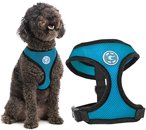 Gooby Dog Harness - Sea Blue, Small - Soft Mesh Head-in Small Dog Harness with Breathable Mesh - Perfect on The Go Mesh Harness for Small Dogs or Cat Harness for Indoor and Outdoor Use