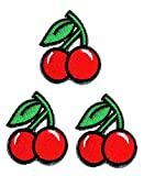 Umama Patch Set of 3 Mini Red Cherry Cherries Fruit Green Leaf Applique Patch Black Cherry Sweet Fruit Embroidered Iron On Patches Craft Decorative Repair Logo Fabric Jeans Jackets Shoes Caps Bags