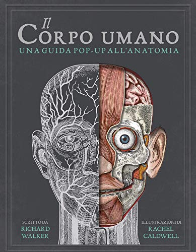 Il corpo umano. Una guida pop-up all'anatomia