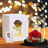 La Bella y la Bestia Rosa, Kit de Rosa Encantada, Principito Luces LED en Cúpula de Cristal con Base Pino, Romántica Regalo Decoración para día de San Valentín Día de la Madre Boda Aniversario