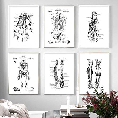 Esqueleto MúSculo Dedos Negro Y Blanco AnatomíA Pared Arte Lienzo Pintura Humano Esqueleto Poster Impresiones ClíNica Pared Cuadros Decoracion 30x40cmx6 No Marco