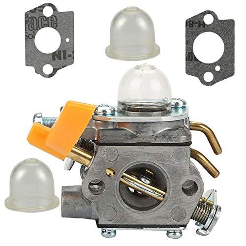 Dafengchui Carburador 10mm Carb w/Junta for Echo SRM 260S 261S 261SB PPT Pas 260 261 BC4401DW Trimmer Carburador (Color : Silver)