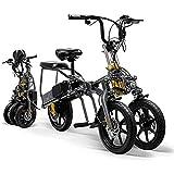 XHJZ Triciclo eléctrico para Adultos Plegable fácilmente Tres Ruedas de Bicicletas de montaña eléctrica Scooter Mini hasta 60-80km 2 batería de Litio Ruedas Grandes Sport