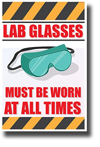 Lab Glasses Must Be Worn at All Times - NEW Classroom Science Poster