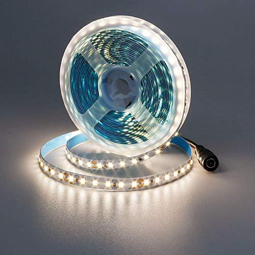 JOYLIT Tira de luces LED regulable de 5 m, color blanco natural, 4000 K-4500 K, 600 ledes SMD 2835, 12 V, flexible, IP33, con fuente de alimentación y regulador para decoración de interior y cocina