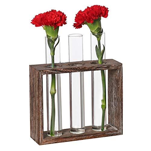 PAKASEPT Deko Holz Halter, Dekorative Vase, Reagenzglas Vase aus Holz, Tischvase Dekovase in Vintage Holzständer mit 3 Reagenzglas Tableto Terrarium für Hydroponics Pflanzen und Dekoration