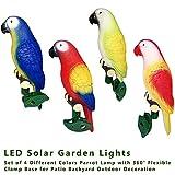 XLCJDJ Luz Solar Del Jardín Led Solar Garden Light Set De 4 Colores Diferentes Lámpara De Loro Luces Led Solares Al Aire Libre Lámpara Impermeable Para La Decoración Del Jardín