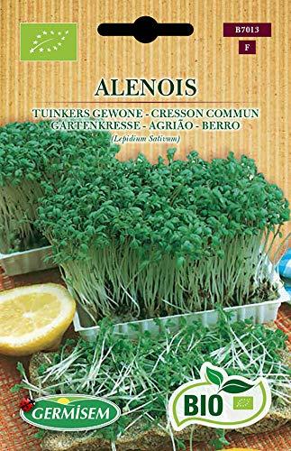 Germisem Orgánica Alenois Semillas de Berro Jardín 8 g