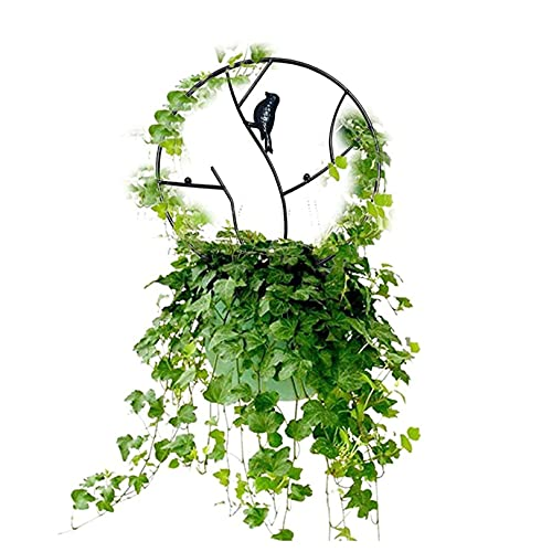 GLJYG Planta trepadora de jardín con enrejado de metal, soporte redondo para plantas trepadoras, soporte para plantas trepadoras, color negro, pequeño