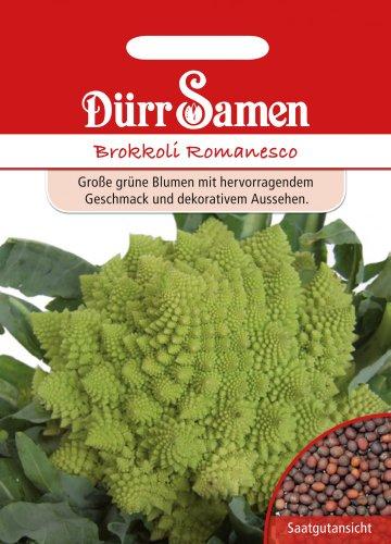 Gemüsesamen - Brokkoli Romanesco von Dürr-Samen