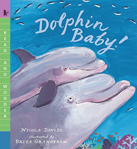 Dolphin Baby! (Read and Wonder) (English Edition)