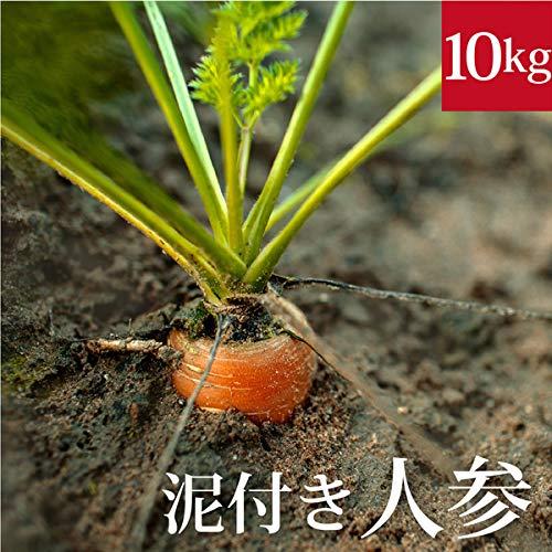 泥付き新人参10kg 国産 無農薬【ゲルソン療法】にんじん ニンジン