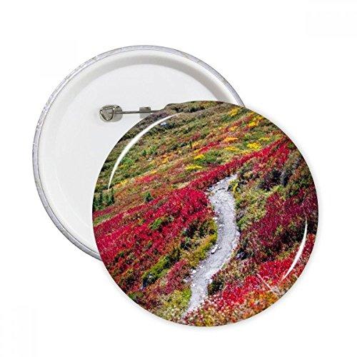DIYthinker Colorido paisaje de Ciencias Forestales Naturaleza Ronda Botón botones insignia 5pcs regalo de la decoración Ropa Multicolor L