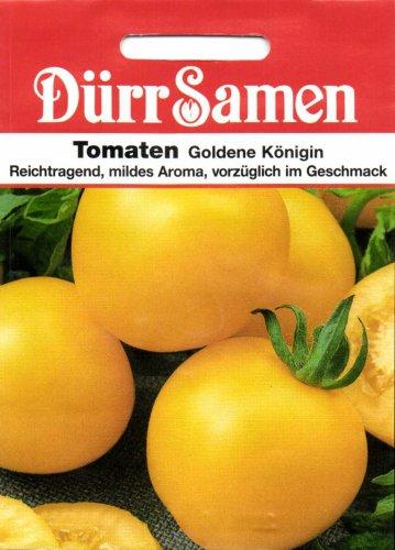 Tomaten Goldene Königin
