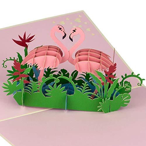Flamingo Pop Up Birthday Card by DEVINE Popup Cards | Happy Anniversary Card for Husband Wife | 3D Birthday Card for Kids, Mom | Pop Up Birthday Cards for Women | 3D Cards Pop Up Cards Love Gifts