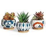 T4U - Juego de 3 macetas suculentas de estilo japonés con platillo de bambú, maceta de cerámica, recipiente para cactus, cuenco para decoración del hogar y la oficina, regalo de boda de Navidad