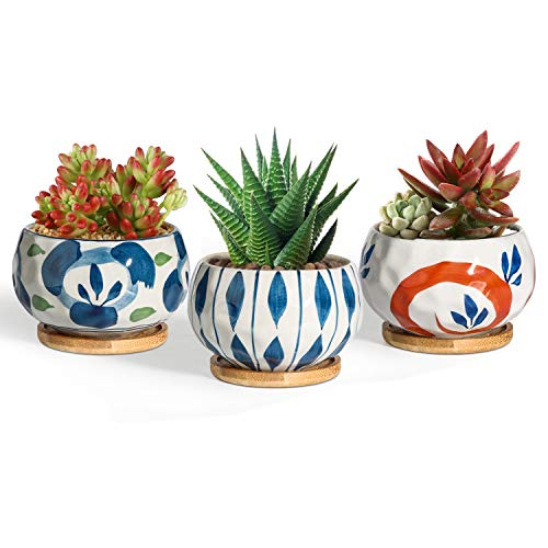 T4U 4 Inch Succulent Pots Japanese Style with Bamboo Saucer Set of 3, Ceramic Plant Planter Cactus Container Flower Holder Bowl Home and Office Decoration Christmas Wedding Gift