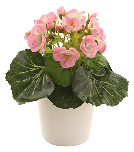 Closer To Nature C036D Violeta Africana artificial, 19 cm, color rosa, 19.00x8.00x8.00...