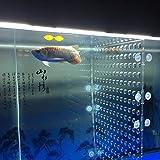 toyuto 11.4''x 18.8'' 55 Gallon Fish Tank Acrylic Divider Aquarium Isolation Board (Suction Cup No...