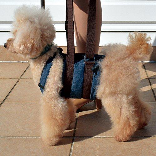 ベルミー『RURUPET犬用介護ハーネスウオークわんデニム』